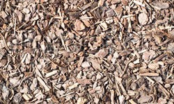 fresh wet wood chip